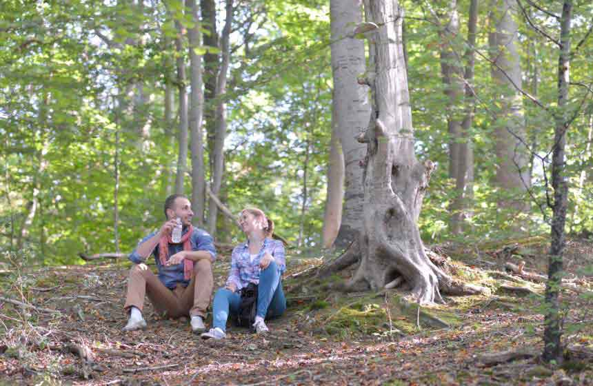 Visit Mother Nature in the nearby Desvres forest during your romantic weekend break