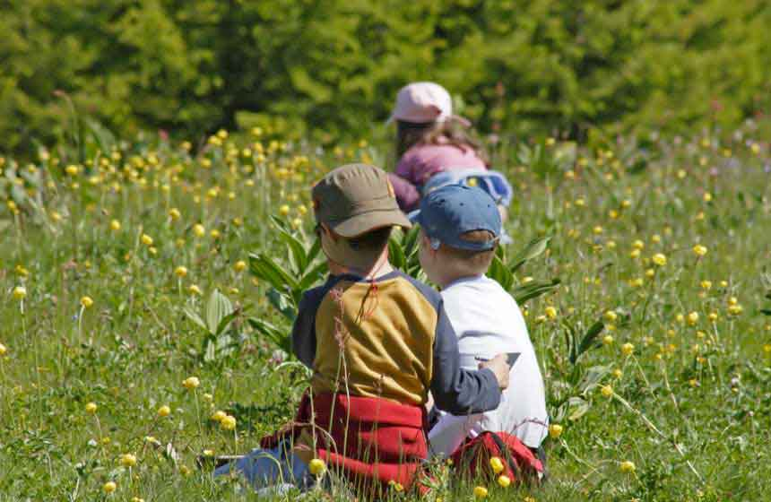With a pretty meadow behind the property, your family gathering at Manoir-du-Bolgaro gite is the perfect opportunity to instil in children a love of the great outdoors