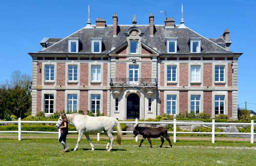 Domaine de Vadancourt - Beautiful parkland with animals - Maissemy