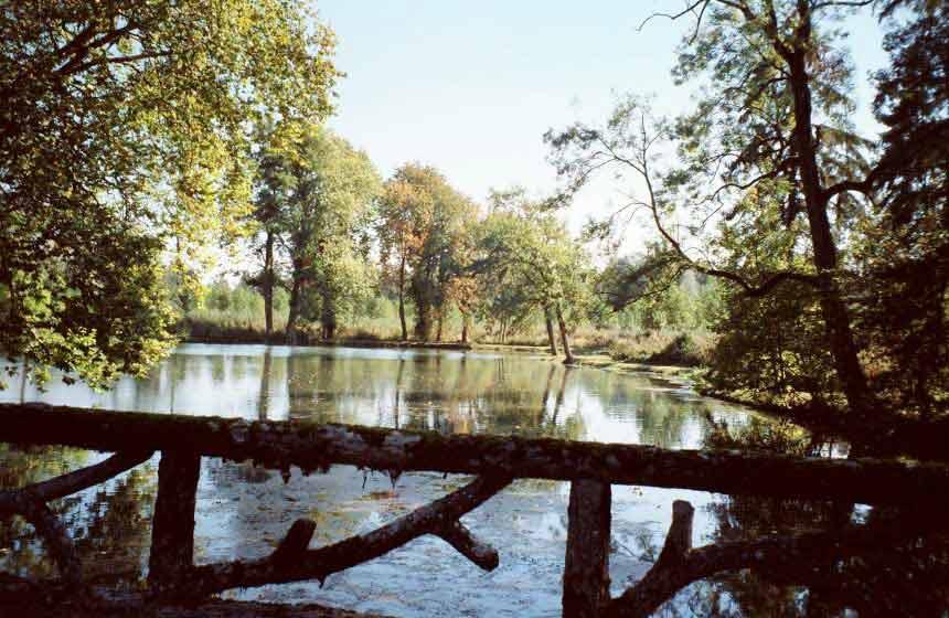 Domaine de Vadancourt - Parkland - Maissemy