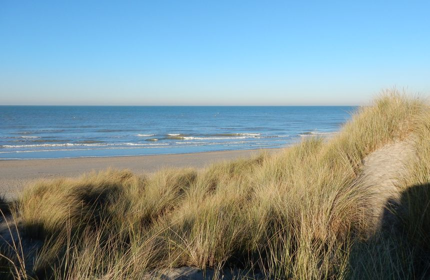 During your B&B stay at Villa Samoa in Northern France's Bray-Dunes, allow time to discover the dunes, nature's best playground
