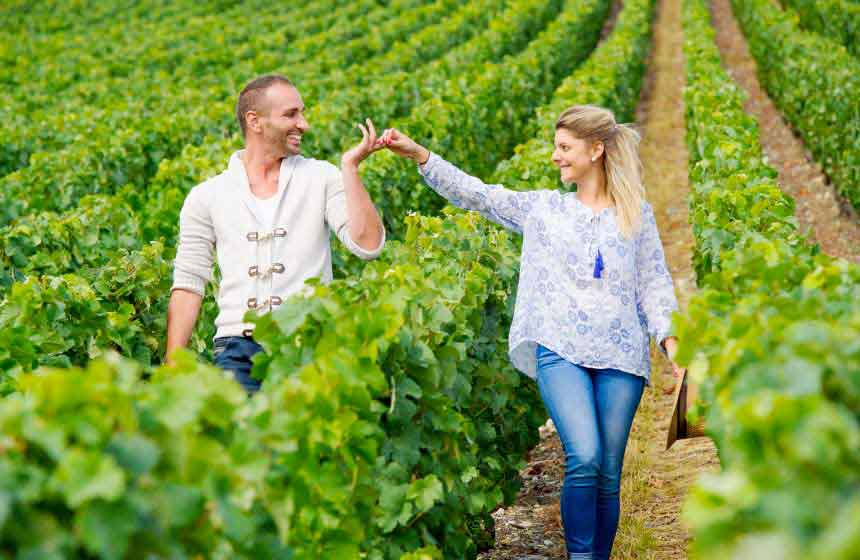 Northern France vineyards are perfect for a romantic getaway