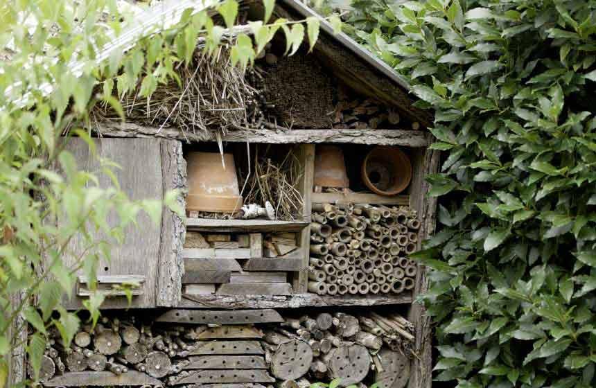 Guesthouse La Chaise Verte - Hotel à insectes - La Houssoye