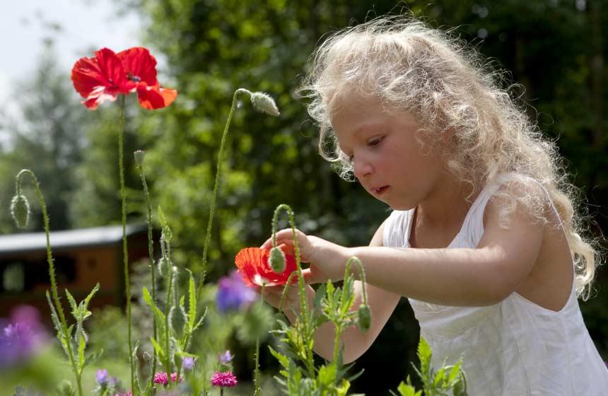 La Maison de l'Omignon - Flowers and child - Vermand