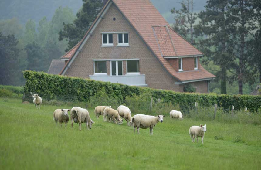 Villa des Groseilliers self-catering gite has its own 5-hole golf course in the garden, complete with flock of sheep!