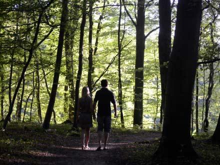 Forêt de Compiègne, Compiègne