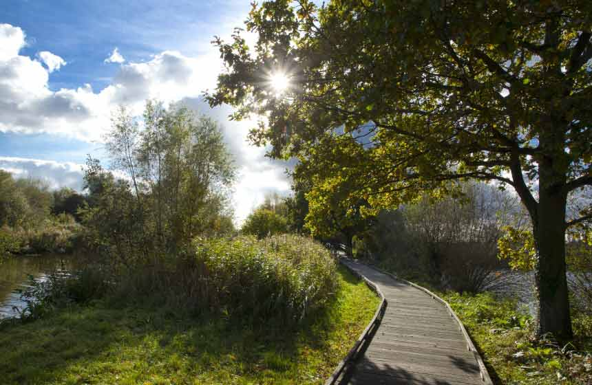A tranquil walk along the pathways of the Marais Audomarois