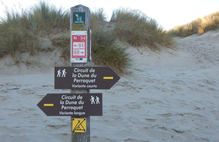 Walking trails help you explore the dunes of Northern France. B&B Villa Samoa, Bray-Dunes