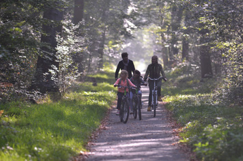 family bike ride in the forest of Compiegne Oise Northern France