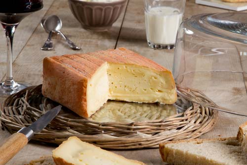 Maroilles Cheese -  Northern France