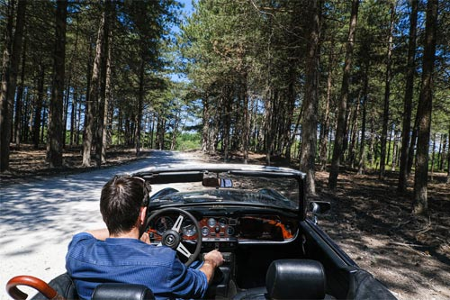 Calais to Le Touquet via the D940 - Parc du Marquenterre reserve - French Weekend Breaks