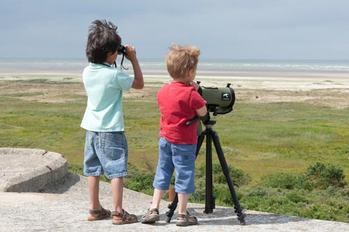 marquenterre bird reserve - French Weekend Breaks