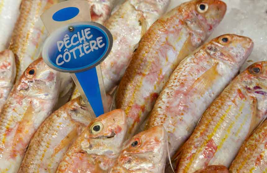 You won't get fresher than Boulogne-sur-Mer's fish market ‒ daily and straight off the boat!