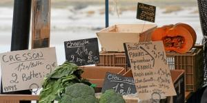 Discovering the market of Saint-Valéry-sur-Somme