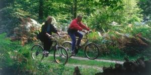 Bike riding in Compiègne Forest