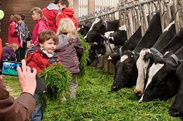 Cheese farm France - French Weekend Breaks