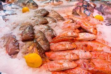 Boulogne-sur-mer market - French Weekend Breaks